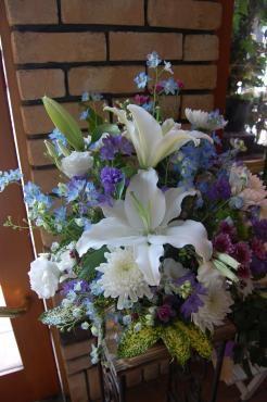 デルフィニウム大活…|「フラワーショップ慶」 (徳島県徳島市の花屋)のブログ